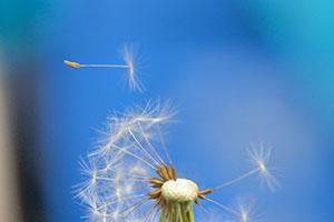 患上白癜风应该怎么去治疗呢